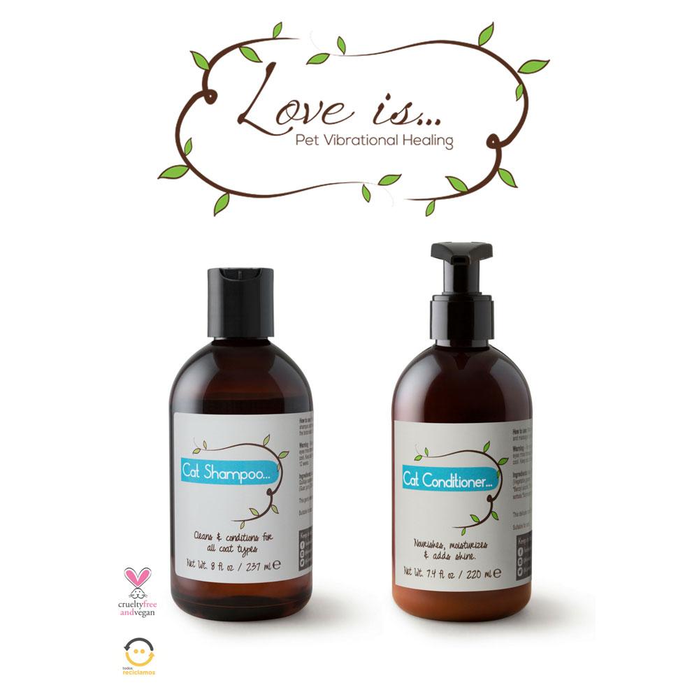 Love Is... para Dancaru.com